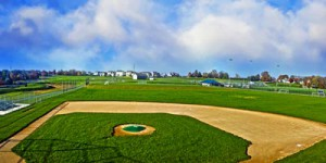 ela-sport-baseball-field-natural-grass-design-park
